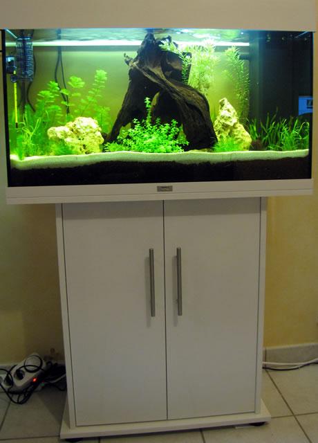 aquarium rio 125 blanc. Black Bedroom Furniture Sets. Home Design Ideas